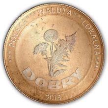 Polska Waluta Lokalna
