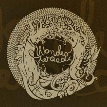 Fundacja Filmowa Wonderwoods