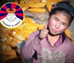 Piekarnia w Nepalu