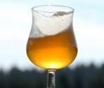 Słoneczne piwo z Bieszczadów