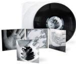 debiutancki album drewnofromlas - (tu wpisz tytuł)