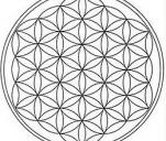Boskie Wzorce - fundament zdrowego człowieka