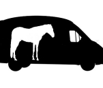 Ratuj konie (razem z nami)