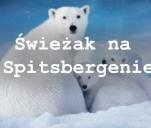 Świeżak na Spitsbergenie