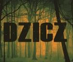 DZICZ - film krótkometrażowy
