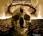 Manipulation - kolejna płyta