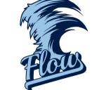 Flow na Mistrzostwa Europy