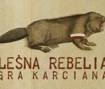 Leśna Rebelia - gra karciana