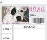 NOAH - pomocnik zwierząt i nie tylko