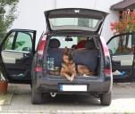 Dwie pancerne i pies, czyli z młotkiem po kraju :)