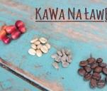 Projekt KAWA NA ŁAWĘ