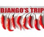 Wydaj album z Django's Trip i bądź w drodze...