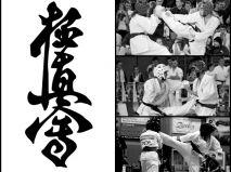 Karate Dream crowdsourcing