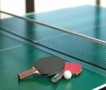 Zakup stołów pingpongowych na treningi i turnieje