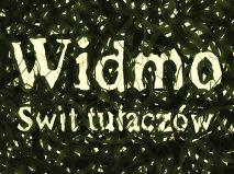 Widmo: Świt Tułaczów ciekawe projekty