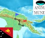 Pieszy trawers Papui Nowej Gwinei