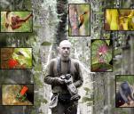 Ochrona Lasów Deszczowych
