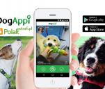 DogAppi - aplikacja dla właścicieli psów