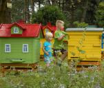 Edukacyjny pszczeli domek dla smakoszy miodu