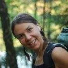 Dorota Wysocka