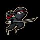 Stowarzyszenie Kultury Fizycznej Ninja