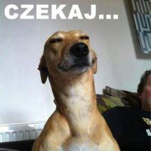 Tobiasz Pe