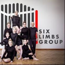 Six Limbs Group